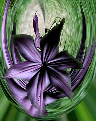 Photograph - Fractured Love In Purple by Barry Doherty