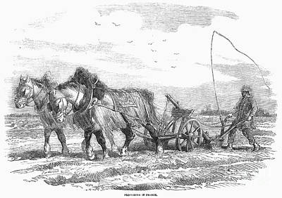 Horse-drawn Plow Photograph - France: Ploughing, 1854 by Granger