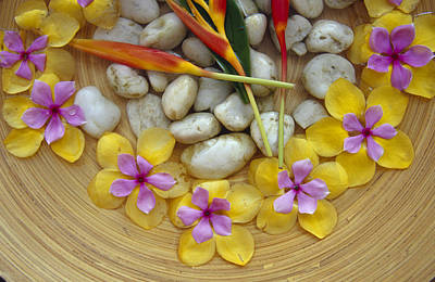Bowl Of Flowers Photograph - Frangipani And Heliconia Flowers by Jason Edwards