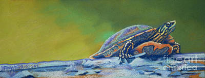 Frank's Turtle Print by Tracy L Teeter