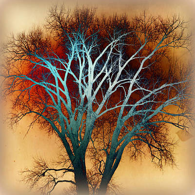 Freaky Tree 1 Art Print by Marty Koch