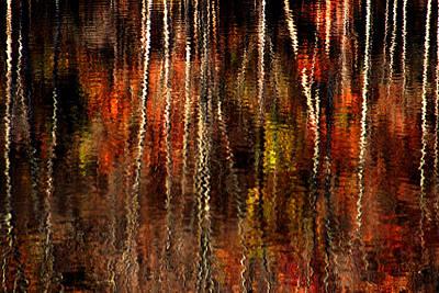 Photograph - Free Fall by Emanuel Tanjala