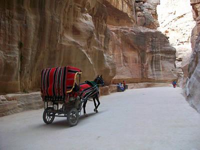 Photograph - Free Ride by Munir Alawi