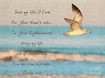 With Scripture Painting - Freedom Flight by Constance Woods