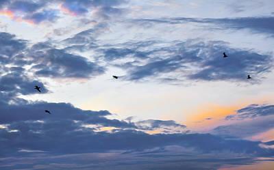 Freedom Flight Print by Kantilal Patel