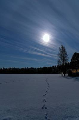 Cold Temperature Photograph - Freezing Cold by Heikki Salmi