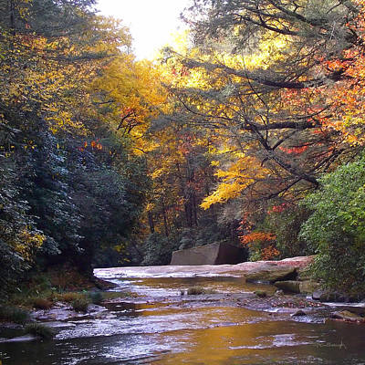 Photograph - French Broad River In The Fall by Duane McCullough