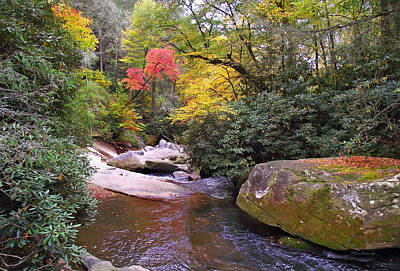Photograph - French Broad Riverfall In The Fall by Duane McCullough