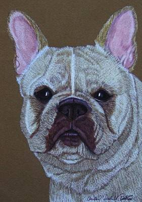 Drawing - French Bulldog Vignette 2 by Anita Putman