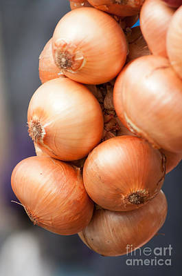 Art Print featuring the photograph French Onions by Andrew  Michael