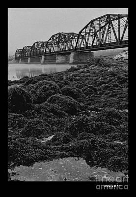 Frenchmans Bay Rr Bridge Art Print