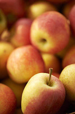 Y120907 Photograph - Fresh Apples by Cameron Davidson