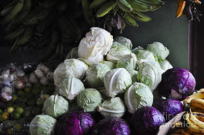 Photograph - Fresh Cabbage For Sale by Li Newton