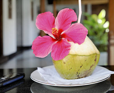 Fresh Coconut Milk Cocktail Art Print by Kantilal Patel