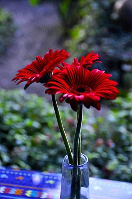 Guatemala Photograph - Fresh Cut Flowers by Tom Bell