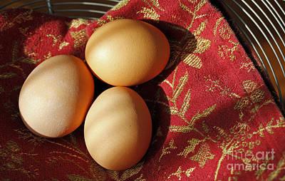 Fresh Eggs Art Print by Denise Pohl