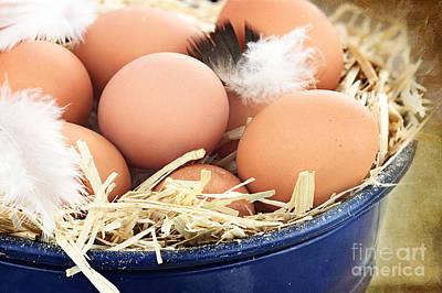 Fresh Farm Eggs Art Print by Stephanie Frey