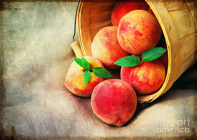 Out Baskets Photograph - Fresh Peaches by Darren Fisher