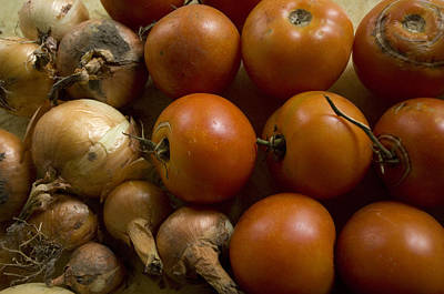 Fresh Tomatos And Onions From A Garden Art Print by Joel Sartore