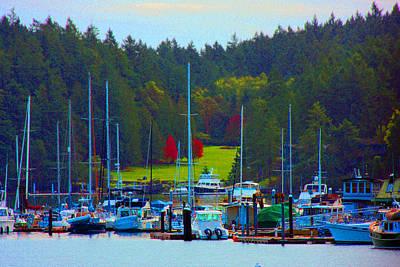 Photograph - Friday Harbor Docks by Marie Jamieson