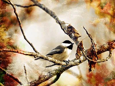 Chickadee Digital Art - Friendly Carolina Chickadee by J Larry Walker