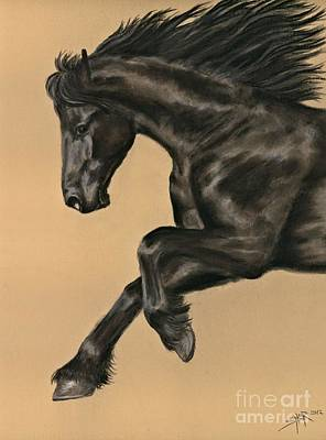 Friesian Portrait Art Print by Sheri Gordon