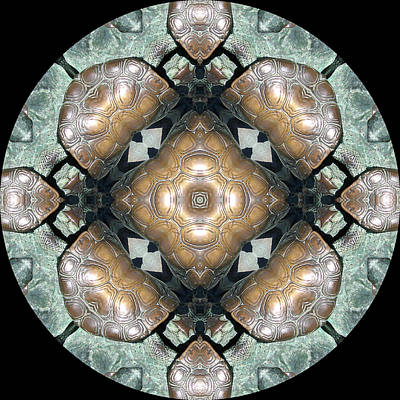 Mandala Digital Art - Frog Mandala 4 by Pam Blackstone