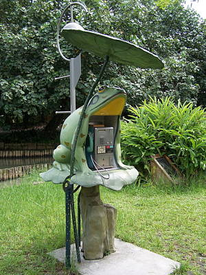 Photograph - Frog Phone by Steve Huang