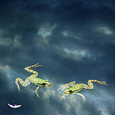 Frogs Art Print by Christiana Stawski