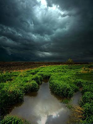 From Above Print by Phil Koch
