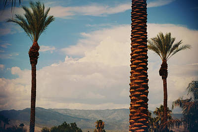 La Quinta Photograph - From Today On by Laurie Search