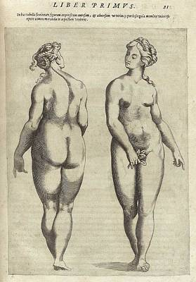 Plump Women Wall Art - Photograph - Front And Back View Of An Idealized by Everett