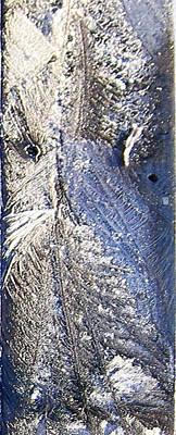 Frost Owl Art Print by Greta Thorsdottir
