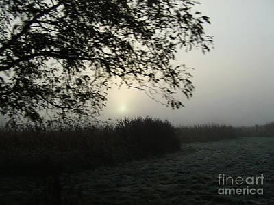 Photograph - Frosted Field by Scott B Bennett