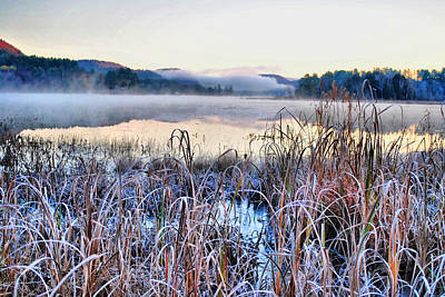 Photograph - Frosted Fog by Emily Stauring