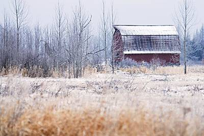Photograph - Frosty Barn by Larry Ricker
