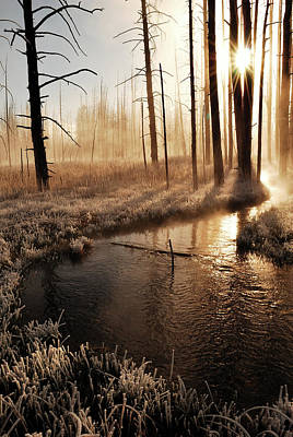 Cold Temperature Photograph - Frosty Yellowstone Morning by by Adam Christensen