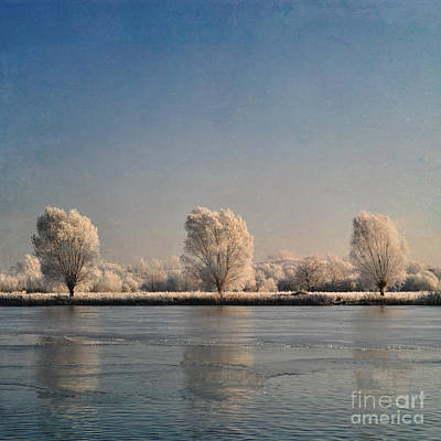 Frozen Lake Art Print by Lyn Randle