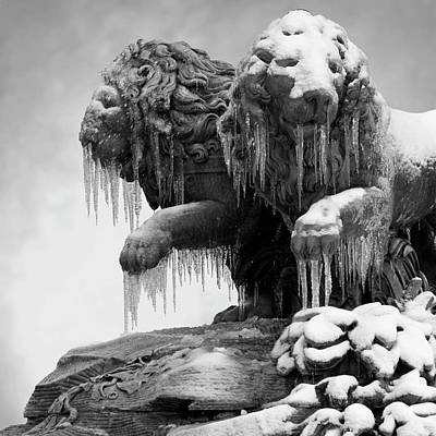 Icicles Photograph - Frozen Lions by Fotografias de Rodolfo Velasco