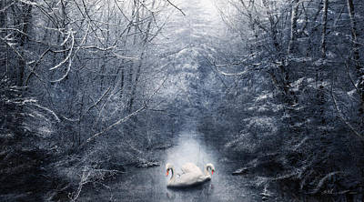 Swan Mixed Media - Frozen Time by Svetlana Sewell