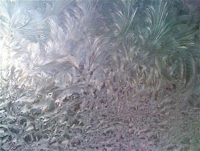 Photograph - Frozen Wonder by Barbara Plattenburg