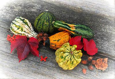 Photograph - Fruits Of Autumn by Jutta Maria Pusl
