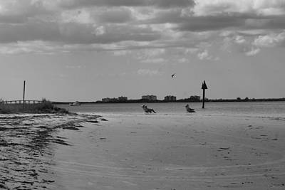 Photograph - Ft. Myers Beach by Florene Welebny