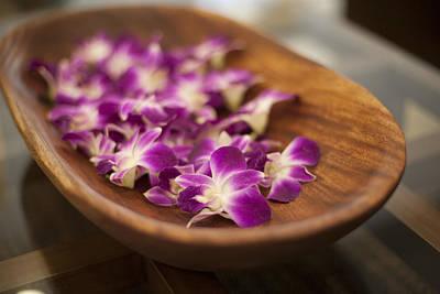 Bowl Of Flowers Photograph - Fuchsia Hawaiian Flowers In A Bowl by Noel Hendrickson