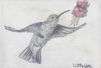Fucshia Garden Art Print