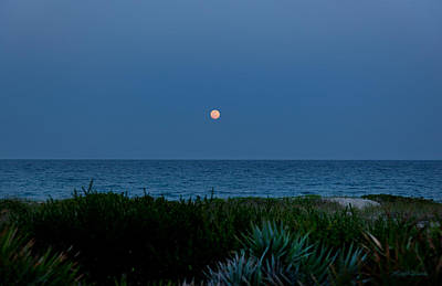 Photograph - Full Flower Moon Rising by Michelle Wiarda