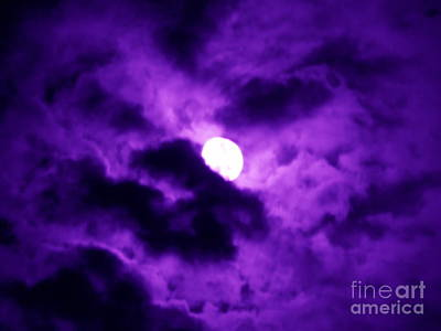 Photograph - Full Moon In Purple Haze by Renee Trenholm