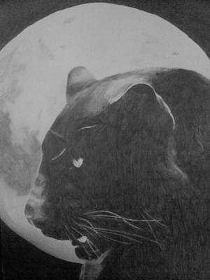 Drawing - Full Moon by Milton  Gore