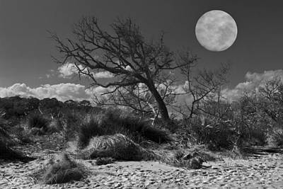 Sea Moon Full Moon Photograph - Full Moon Over Jekyll by Debra and Dave Vanderlaan
