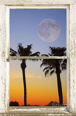Full Moon Photograph - Full Moon Palm Tree Picture Window Sunset by James BO  Insogna